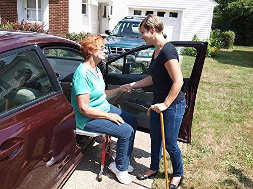 Best Car Seat Transfer Systems for the Elderly and Disabled